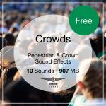 Crowds Icon 2 Full 300x Free 3